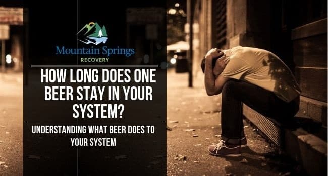 How-Long-Does-One-Beer-Stay-In-Your-System